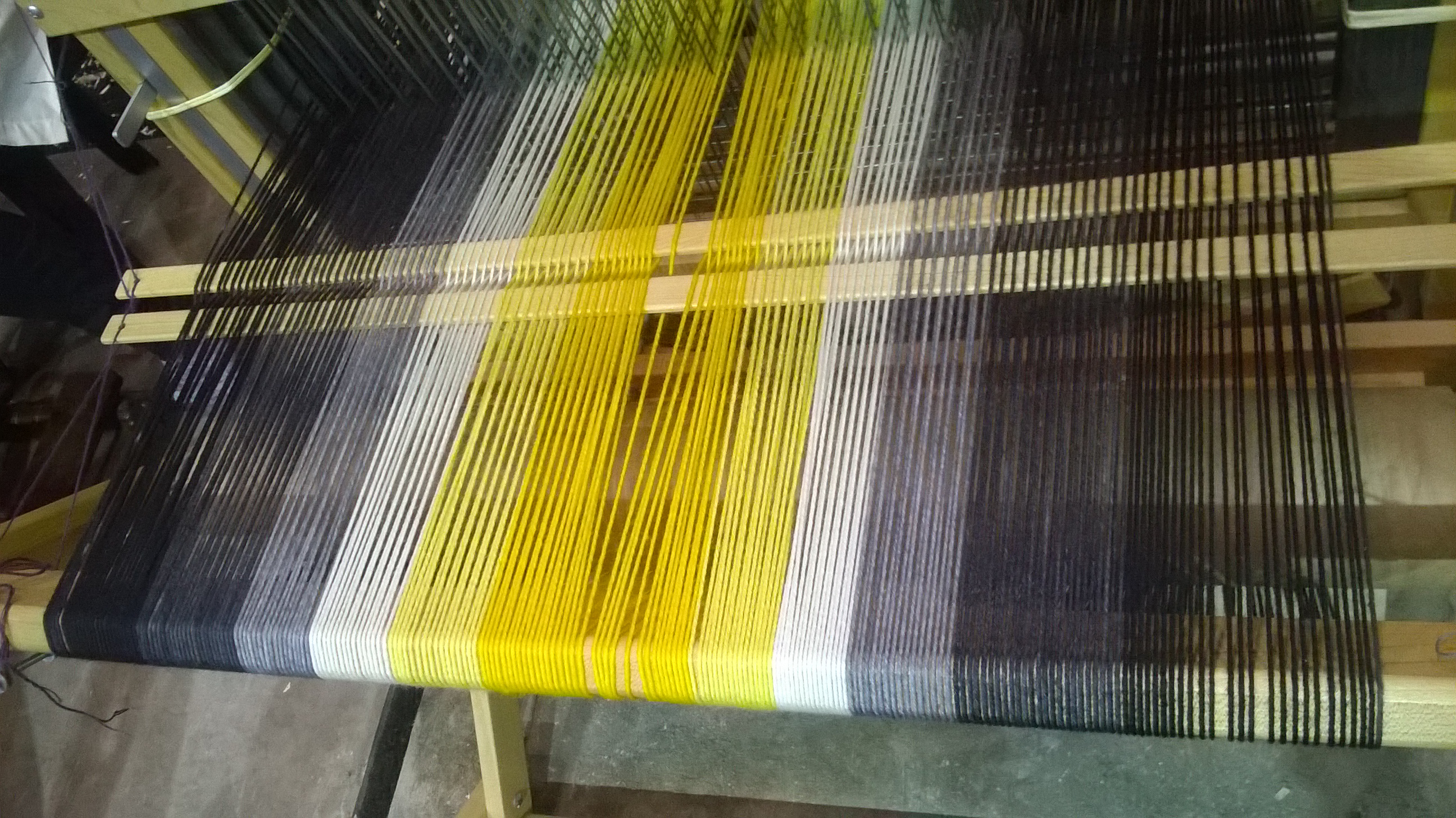 Our warp, ready to go!